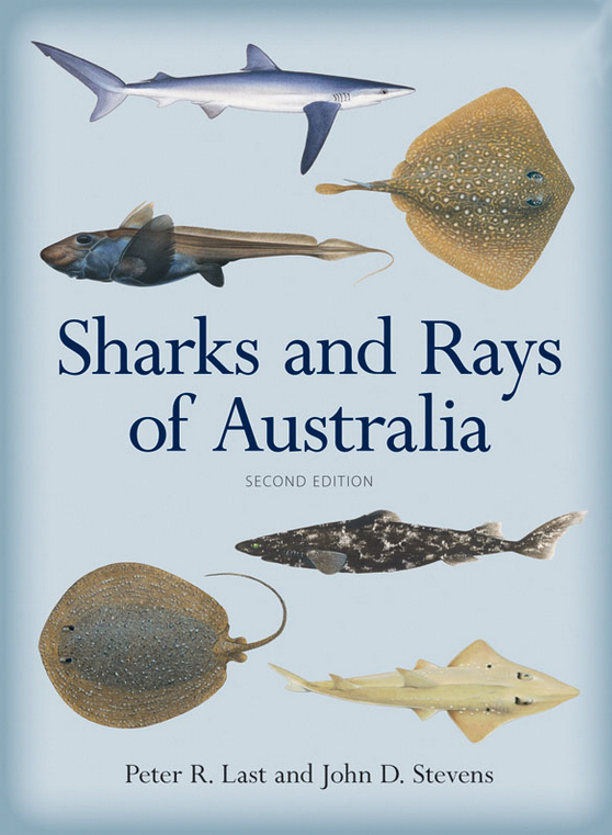 Sharks and Rays book
